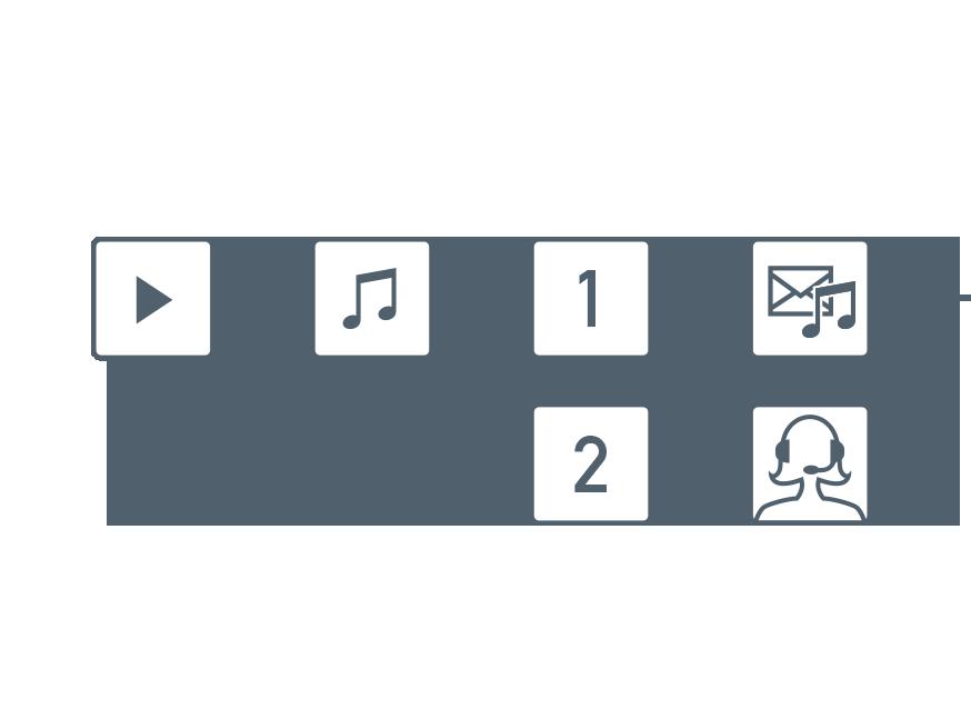 Primus自動音声応答(IVR)オプション